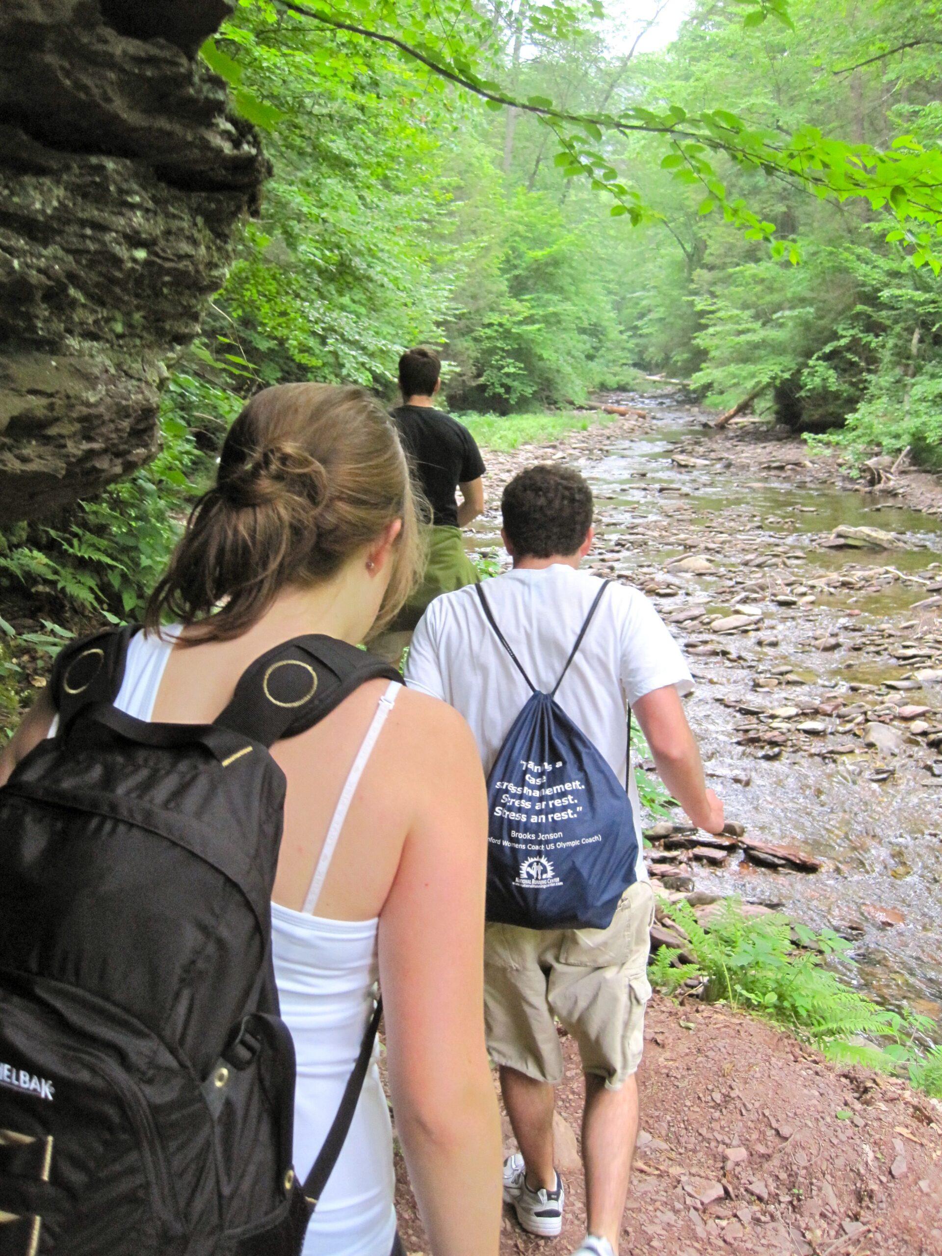 Nature Hike Ricketts Glen State Park Sullivan Co